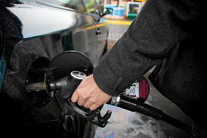 Ceny paliw zamroziło na święta. Puchną zyski koncernów