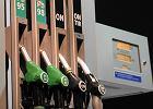 Eksperci nie mają złudzeń, że opłata emisyjna została przerzucona na kierowców. Płacą klienci, nie koncerny