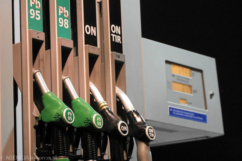 Świeże Ceny na stacjach paliw w dół. Ropa z Arabii i od Kurdów walczy z EM25