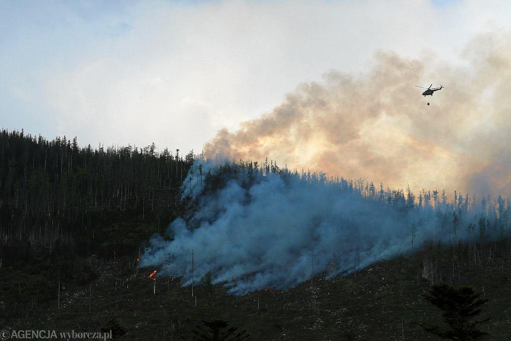Wysokie Tatry: pożar lasu
