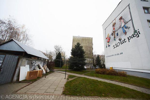 Zdjęcie numer 1 w galerii - Na bloku na łódzkim Radogoszczu powstał niezwykły mural na 110-lecie Widzewa