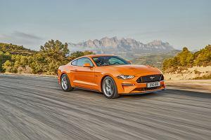 Mustang Szybkie randki