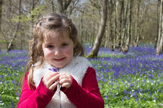 Co można robić z dziećmi w lesie?