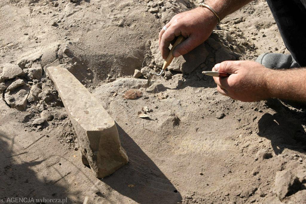Archeolodzy na tropie fałszerzy pieniędzy spoza Cesarstwa Rzymskiego