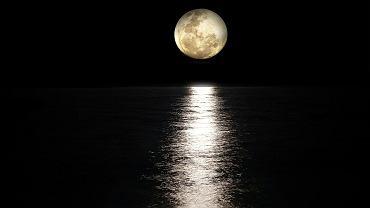 Kiedy zobaczymy Pełnię Księżyca Jesiotrów?