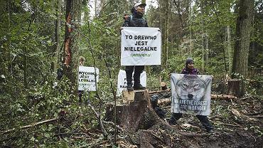 6 września w Nadleśnictwie Białowieża, w strefie ochronnej UNESCO, o świcie rozpoczęła się kolejna blokada wycinki najstarszej część Puszczy Białowieskiej. Około 40 aktywistów Greenpeace z 9 państw i osoby z Obozu dla Puszczy zablokowały pracę maszyn, które wycinały i przygotowywały do wywozu drzewa, mimo zakazu wydanego przez Trybunał Sprawiedliwości UE.