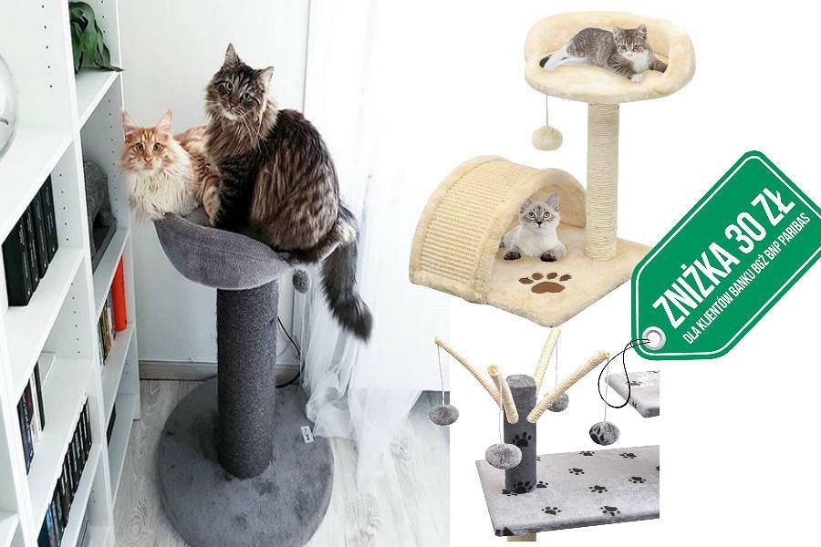 Drapaki dla kota z rabatem