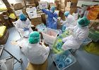 Koronawirus: Dlaczego zawiódł wart miliony chiński system wczesnego ostrzegania? Po prostu nie został uruchomiony
