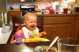 Śmiech geniusza zła w małym ciałku. Rozbrajające nagranie na pewno cię rozweseli [WIDEO]