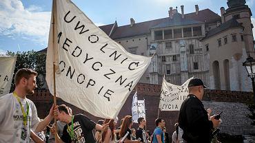 Zwolennicy legalizacji medycznej marihuany na Marszu Wyzwolenie Konopi w Krakowie 9 maja 2015 roku