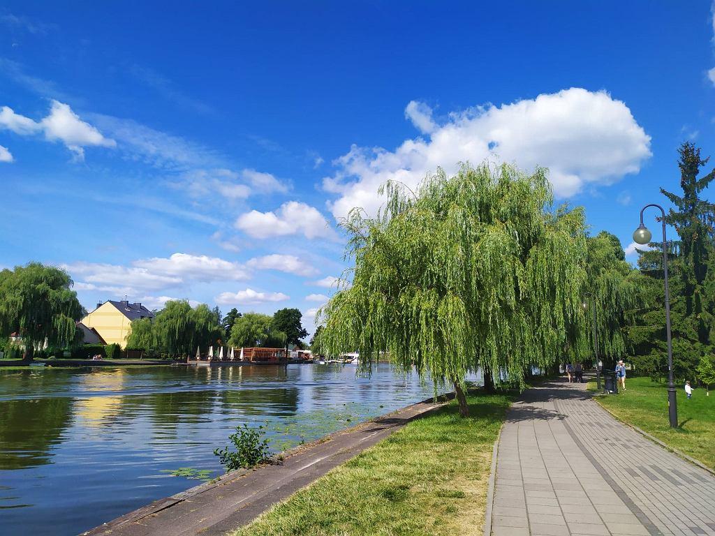 Szczególne wrażenie robią rozłożyste wierzby płaczące wzdłuż deptaku i ścieżki rowerowej, wiodącej przy samej rzece Netta