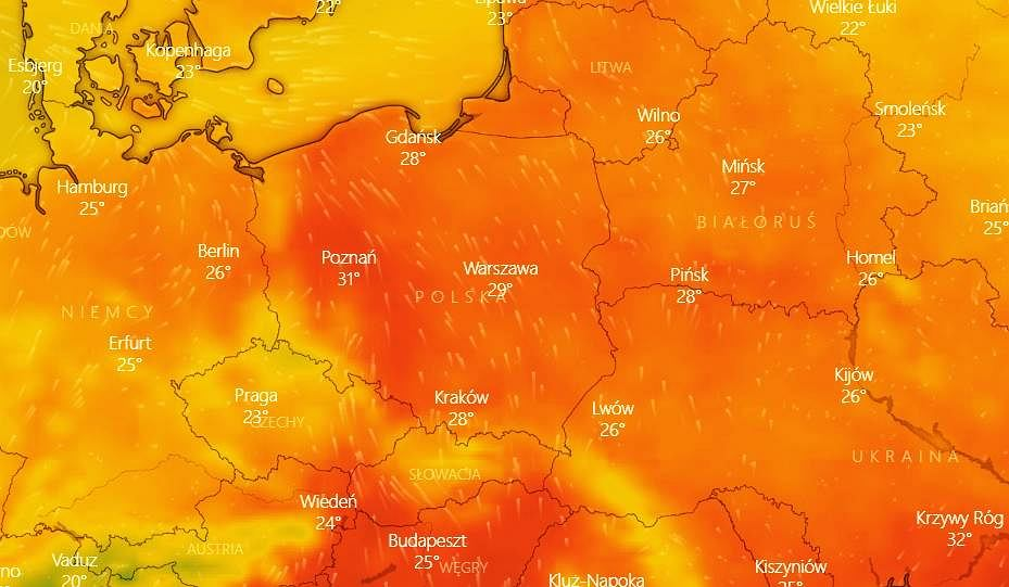 Mapa temperatur na niedzielę 25 lipca.