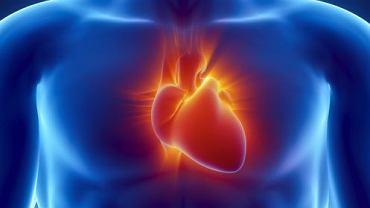 Zmiany wywołane zespołem Alagille'a widoczne są także w obrębie serca