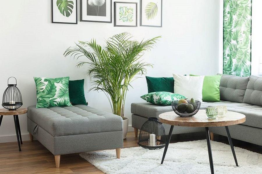 Przytulny salon w stylu minimalistycznym