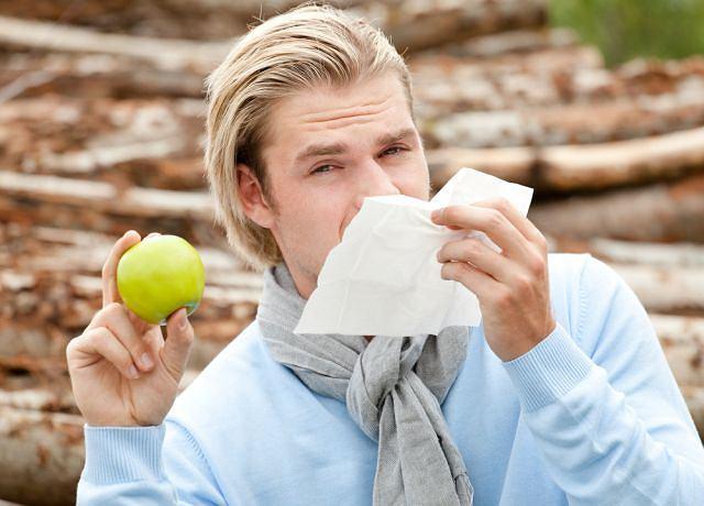 Alergia na jabłko? W jabłkach może być co najmniej kilka alergenów, których własności są bardzo różne. Co prawda wszystkie występują w jabłku surowym, ale niektóre przestają wywoływać objawy po ugotowaniu czy po upieczeniu. Jeszcze inne znajdują się pod skórką, więc jabłko obrane alergik może jeść bezkarnie.Kolejne występują nie tylko w jabłku ale też w pyłkach roślin, wywołując nieżyt nosa tylko wczesną wiosną.
