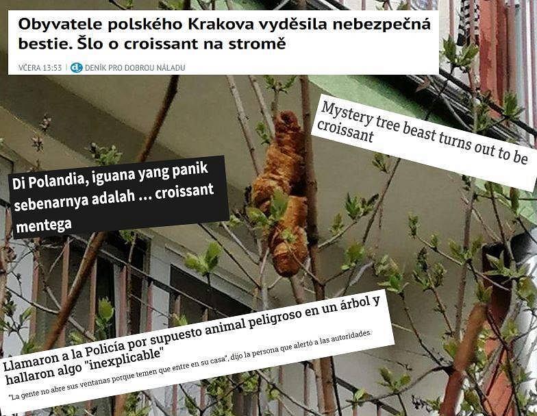 'Lagun' trafił do zagranicznych gazet