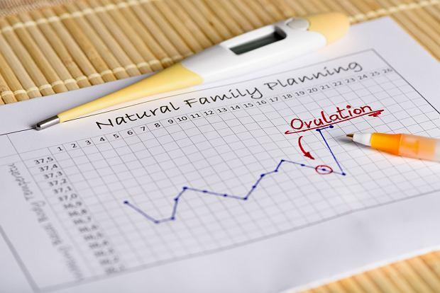 Naturalne planowanie rodziny - metody. Ciąża i antykoncepcja