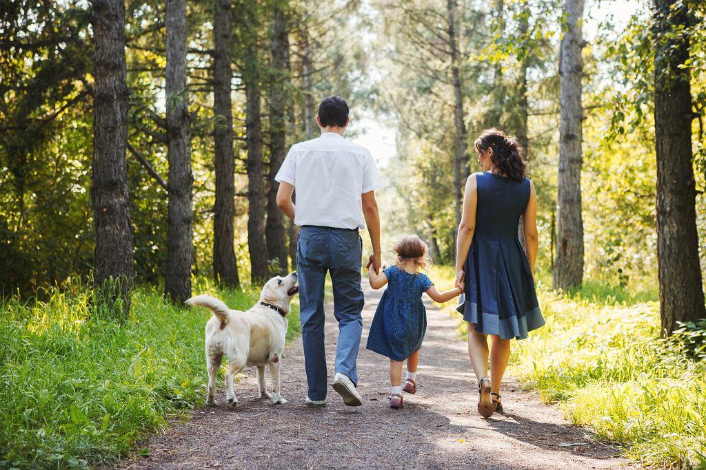 Zasiłek rodzinny 2021 - kwota uzależniona od wieku dziecka. Rodzice dostaną najwięcej w konkretnej sytuacji