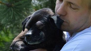 """Skatowany pies """"Oczko"""" walczy o życie"""