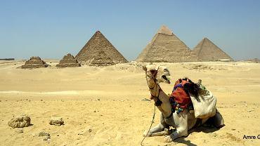 Egipt podnosi cenę za wydanie wizy