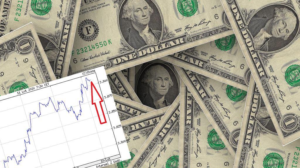 Kurs dolara jest najwyższy od dwóch miesięcy