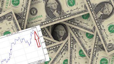 Kursy walut 11.02 o godz. 7. Dolar najdroższy od dwóch miesięcy [kurs dolara, funta, euro, franka]