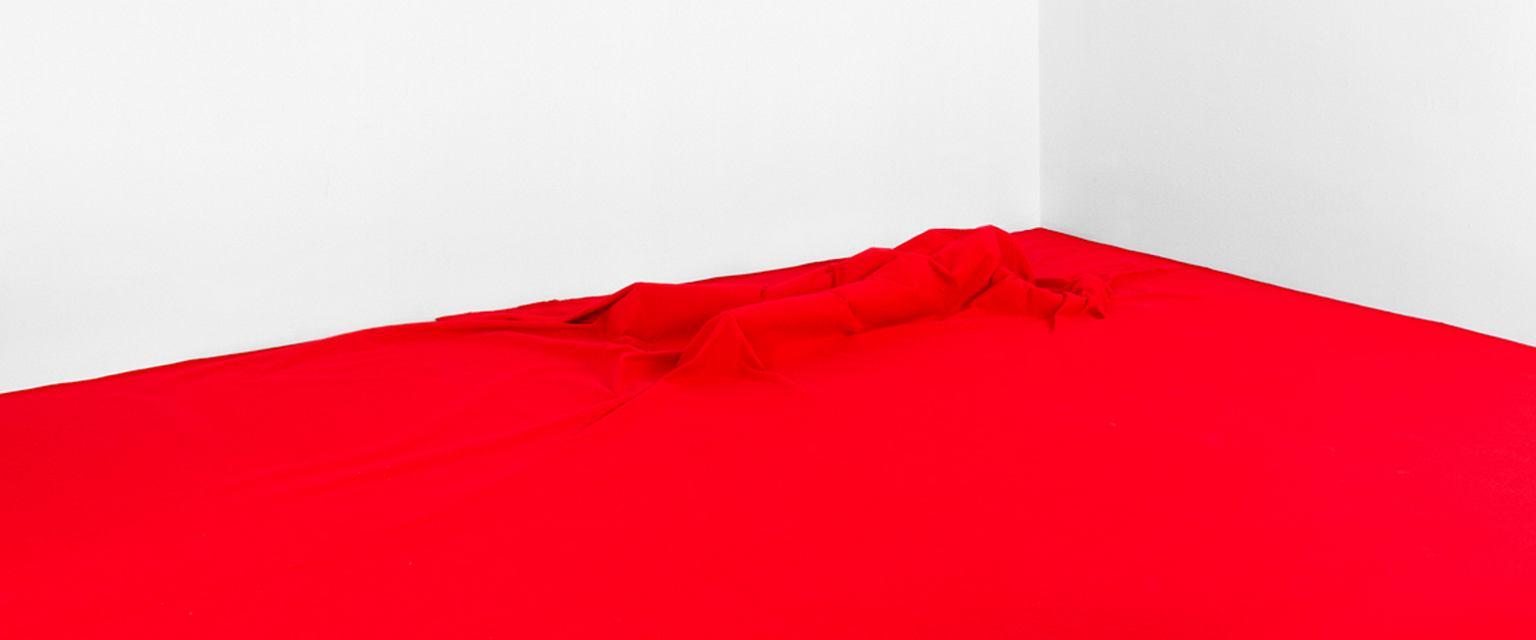 Oskar Dawicki, 'To nie jest flaga', 2014 (fot. dzięki uprzejmości galerii Raster, Warszawa. Autor: Oskar Dawicki)