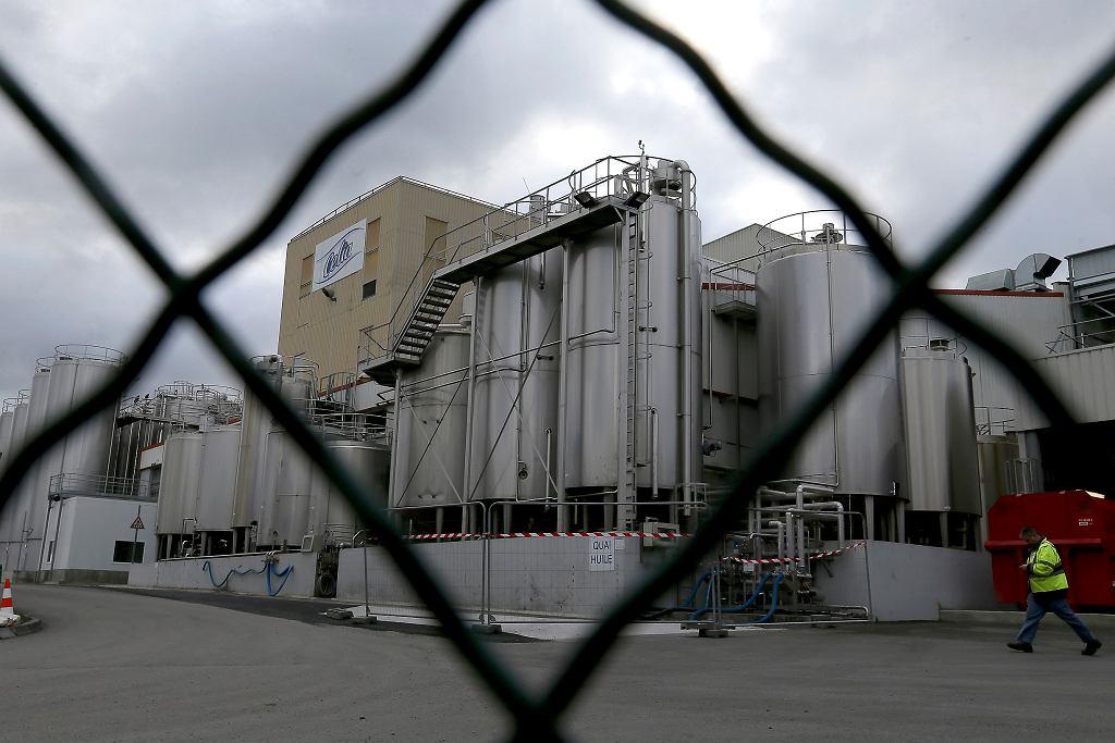 Fabryka Lactalis w Craon, potencjalne źródło miejsce produktów salmonellą