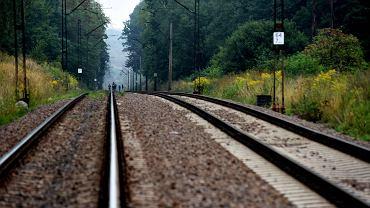 Złoty pociąg. Miejsce, w którym ma być ukryty