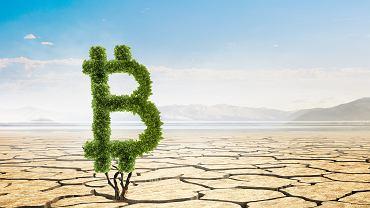Trwa bitwa o Bitcoina. Tym razem Elon Musk gra zieloną energią
