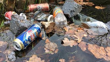 Śmieci na terenie Fortu Bema