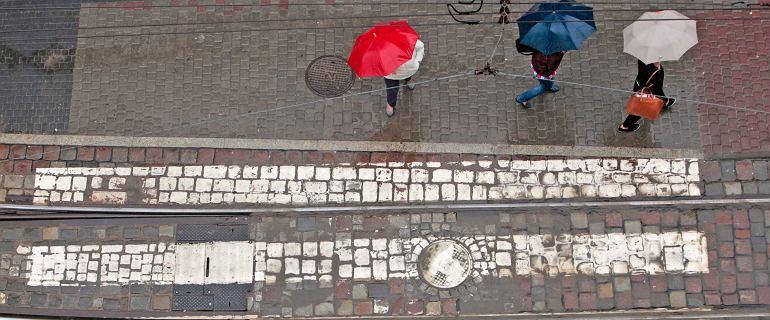 Skarżysko-Kamienna. Troje dzieci i opiekunka potrąceni na pasach