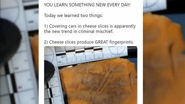 Żółty ser pomoże namierzyć złoczyńców? Policja z Teksasu opublikowała niecodzienne zdjęcie.