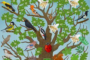 Jak pomóc dzieciom w zdobywaniu wiedzy na temat przyrody?