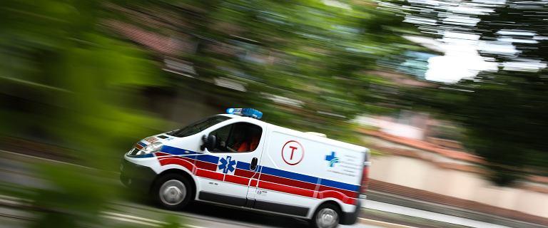 Wielkopolskie. Dwa mastiffy tybetańskie śmiertelnie pogryzły 65-latka
