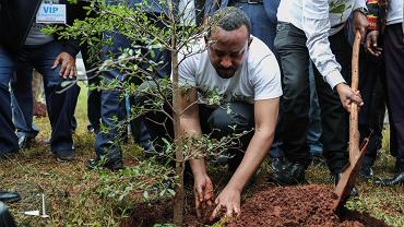 Minister Etioppii Abiy Ahmed