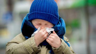 Infekcja może być wirusowa lub bakteryjna, ale to nie jest jedyny podział, jakiego można dokonać