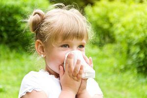 Alergiczny nieżyt nosa u dzieci - jak postępować?