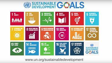 Cele ONZ na najbliższe 15 lat