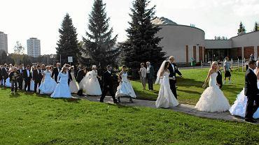 Pary ślubne w Chorzowie
