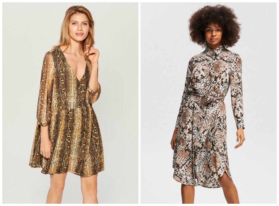 sukienki w zwierzęce wzory