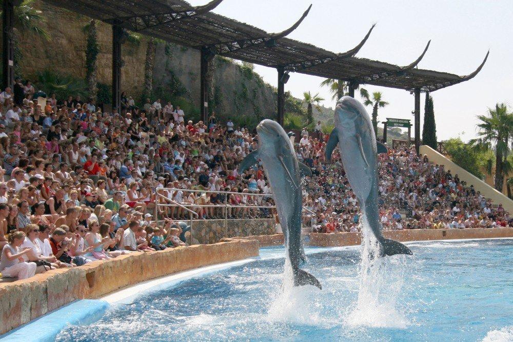 Park rozrywki MundoMar, gdzie można obejrzeć m.in. delfiny