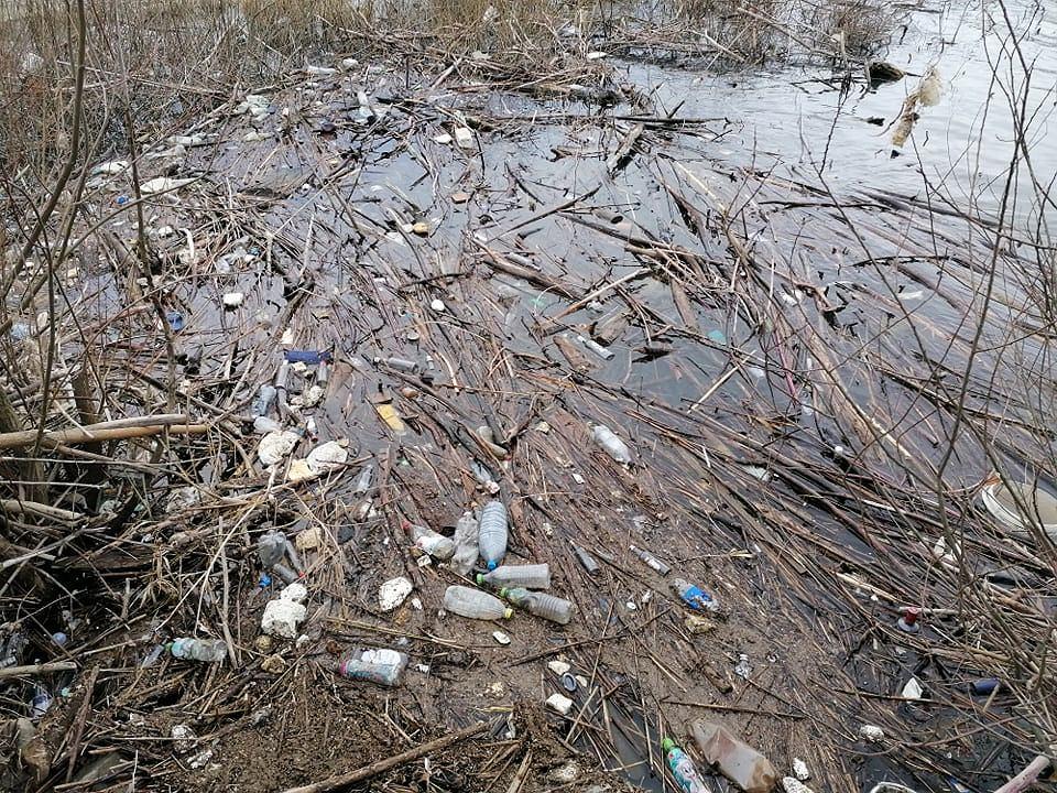 Zdjęcie numer 9 w galerii - Przerażający widok. Na brzegach pięknych beskidzkich jezior leżą tony śmieci [ZDJĘCIA]