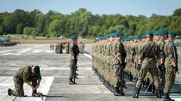 Wojsko / zdjęcie ilustracyjne