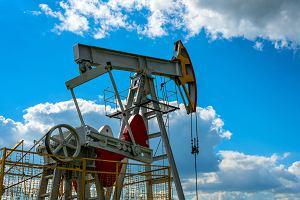 Kto zabrudził ropę z Rosji? W Moskwie szukają dywersantów