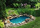 Oczko wodne w ogrodzie - ozdobne i pożyteczne urozmaicenie przydomowego krajobrazu