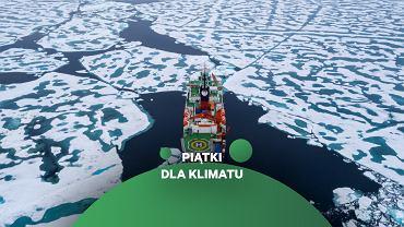 Polarstern w drodze ku biegunowi północnemu. Lód na trasie okazał się być zaskakująco słaby, z dużą ilością wytopionych kałuż na powierzchni i lodołamacz mógł go z łatwością kruszyć.