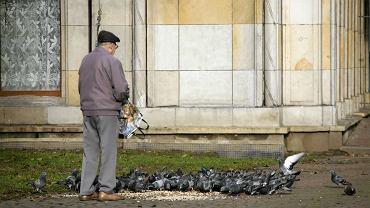 Po przejściu na emeryturę mierzymy się z odnalezieniem w nowych rolach społecznych, ze stratą bliskich, z utratą zdrowia, sprawności' (fot: Marta Błażejowska/ Agencja Gazeta)