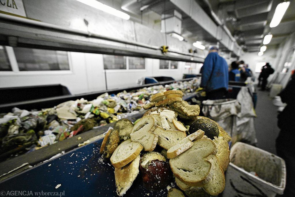 Jak sieci handlowe walczą z marnowaniem żywności?