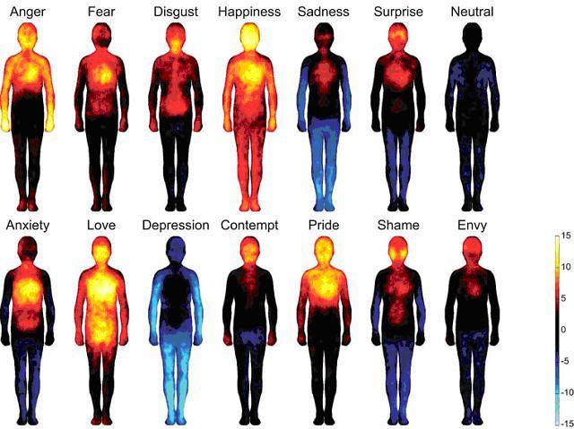 Ilustracja przedstawiająca schematyczne rozmieszczenie emocji w ciele. Na górze kolejno od lewej: złość, strach, wstręt, szczęście, smutek, zdziwienie, stan neutralny. Na dole kolejno od lewej: lęk, miłość, depresja, pogarda, duma, wstyd, zazdrość. Ciepłe kolory: partie ciała odczuwane w czasie doświadczania emocji; zimne kolory: partie ciała niejako wyłączone.